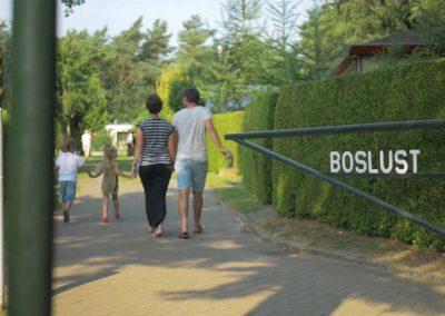 Camping Boslust – Promovideo